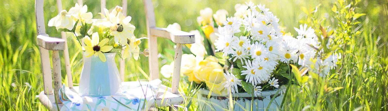Nützliche Tipps für Deinen Garten