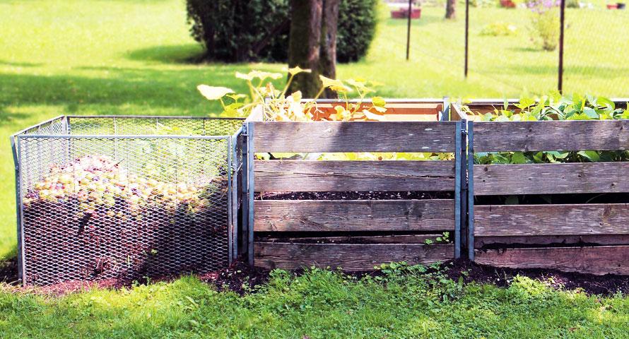 Richtig kompostieren – diese einfachen Tipps beachten