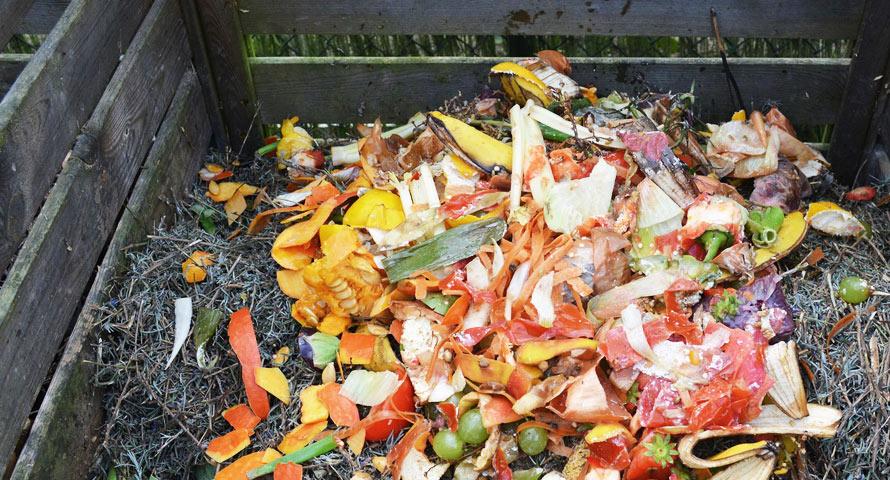 So sieht typischer Kompost aus