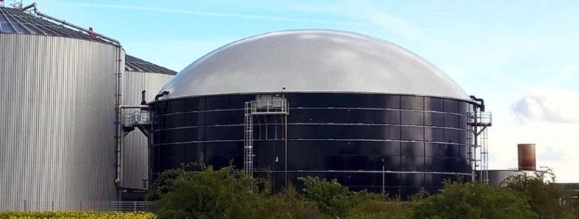Was ist Biogas: Entstehung, Effizienz - ist es gar Alternative?